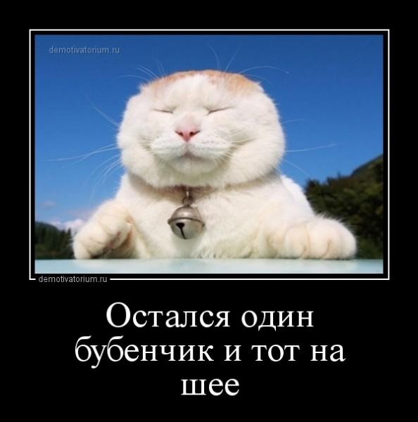 dostalsja_odin_bubenchik_i_tot_na_shee_162089.jpg