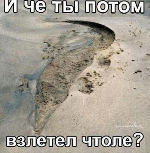 fotopodborka_pjatnicy_81_foto_5.jpg