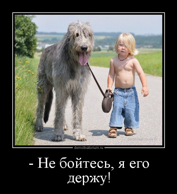 demotivatorium_ru__ne_bojtes_ja_ego_derju_161788.jpg