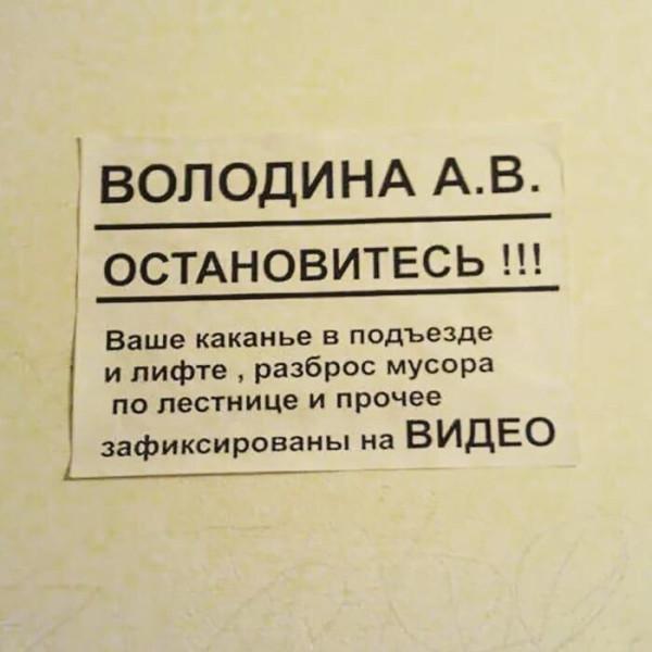 1534769798.jpg