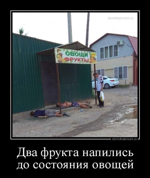 dva_frukta_napilis_do_sostojanija_ovoshej_162367.jpg