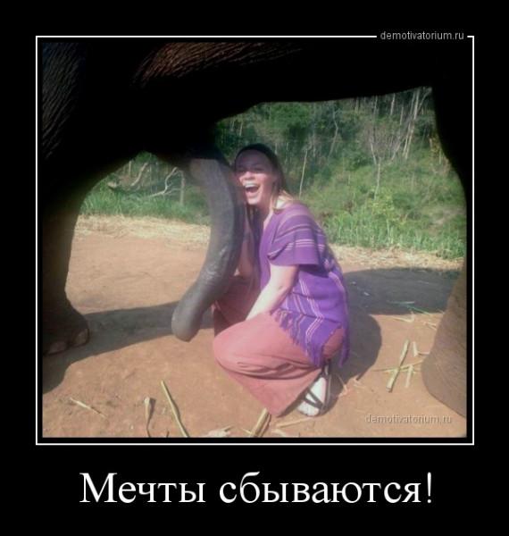 mechti_sbivautsja_162182.jpg