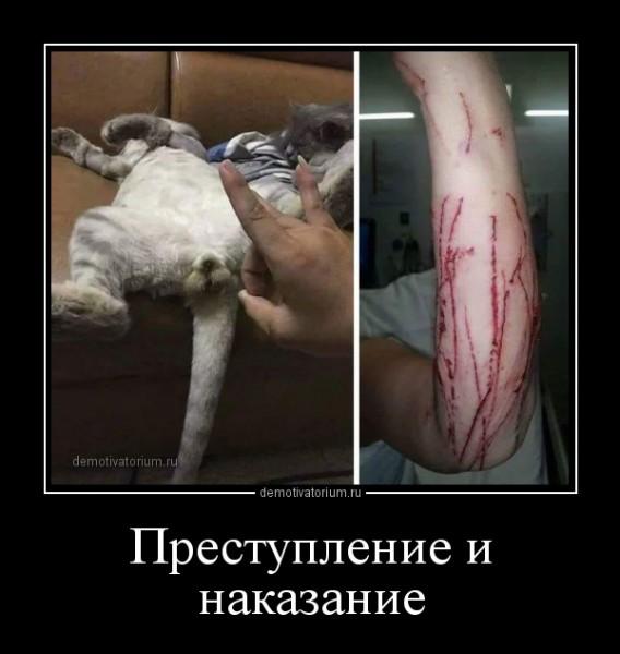 prestuplenie_i_nakazanie_163081.jpg