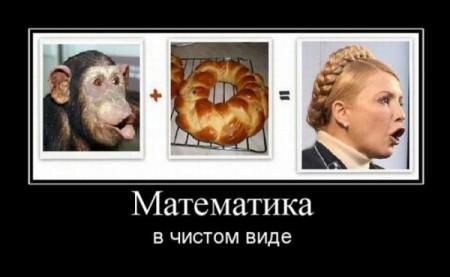 США Тимошенко 2