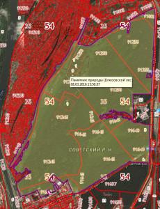 карта границ ООПТ Шлюзовской лес 1.jpg