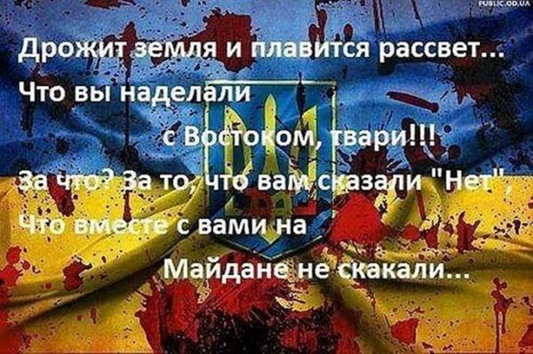 1486201112_53b480e704148_1404338407