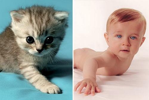 милые малыши фото