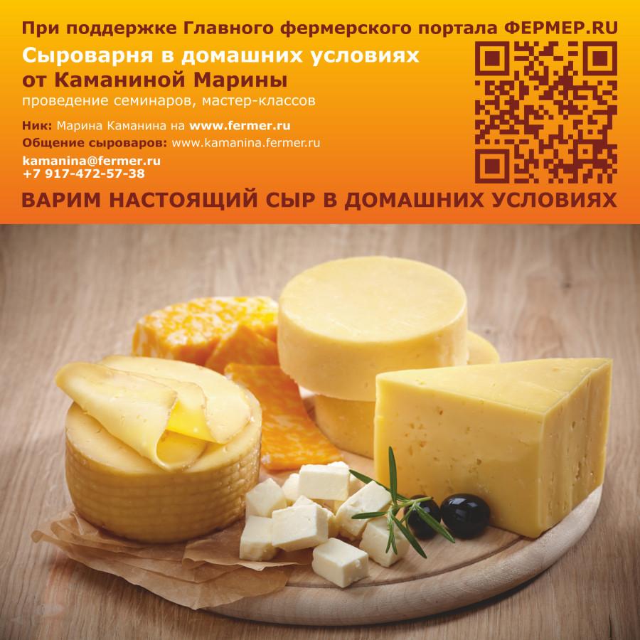 Качество сыра проверить в домашних условиях