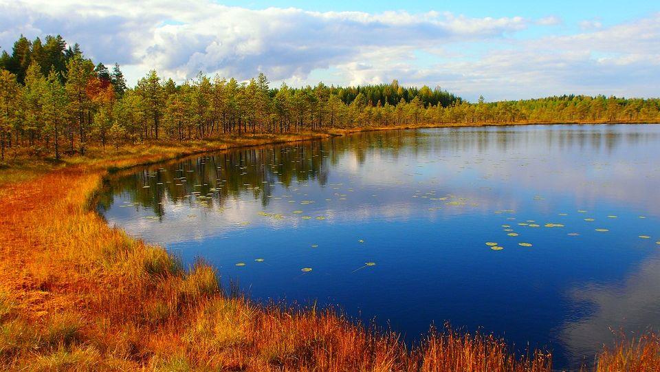 autumn-finland