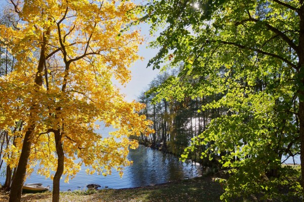 finland-fall2016-3