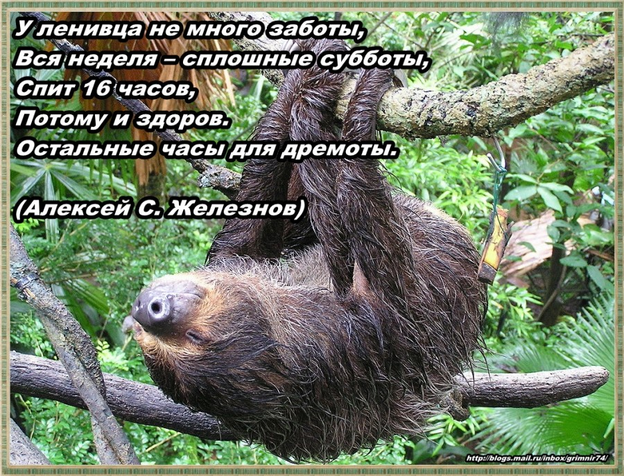 Л-ленивец 2