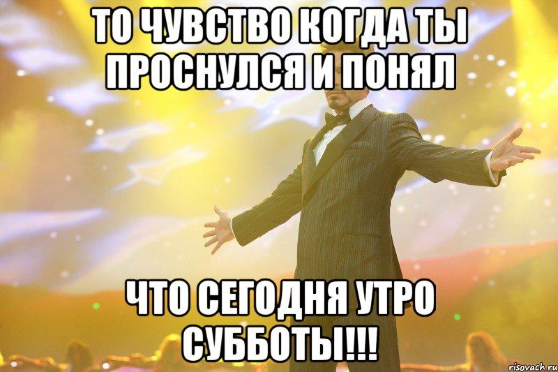 toni-stark_24919334_big_
