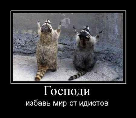 1280215281_1280084222_demotivatry_83