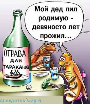 анекдот-про-тараканов-6