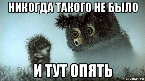 yozhik-v-tumane_143385768_orig_