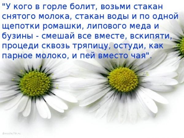 img_user_file_5479ded34c4af_2_9