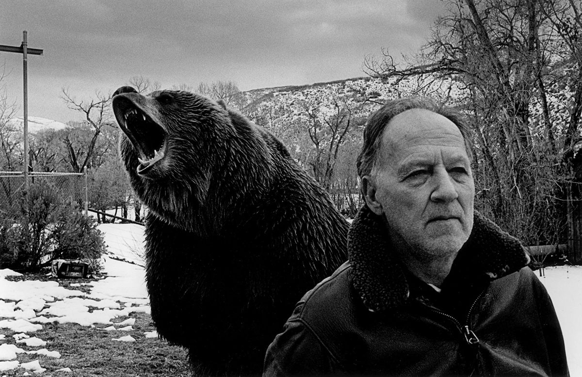 grizzly-man-herzog