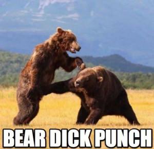 драка медведей