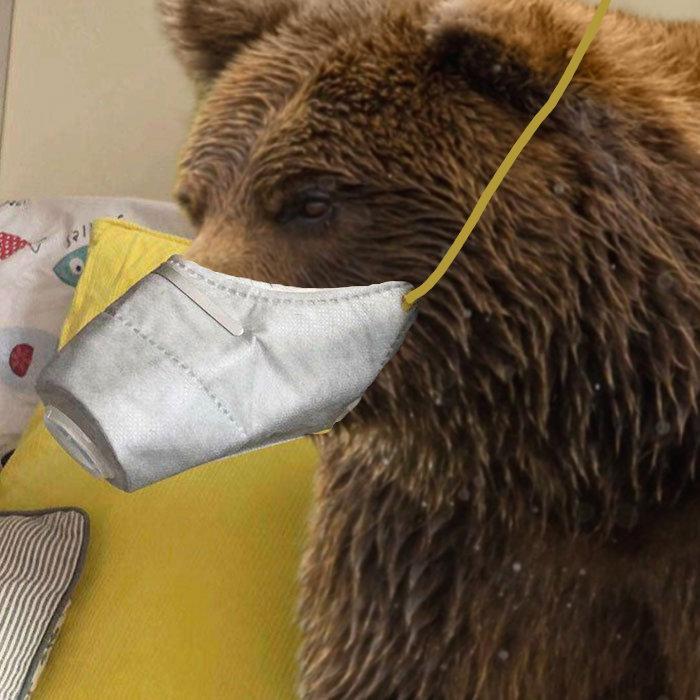 bear-masks.jpg