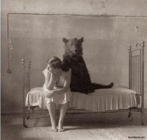 bears bed