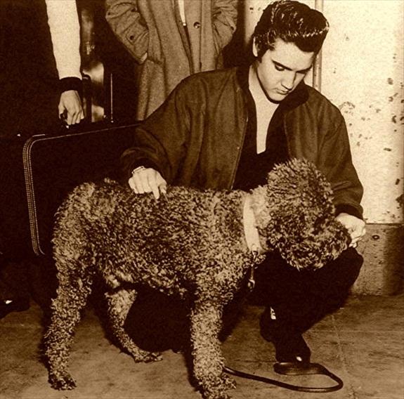 Elvis poodle 1957