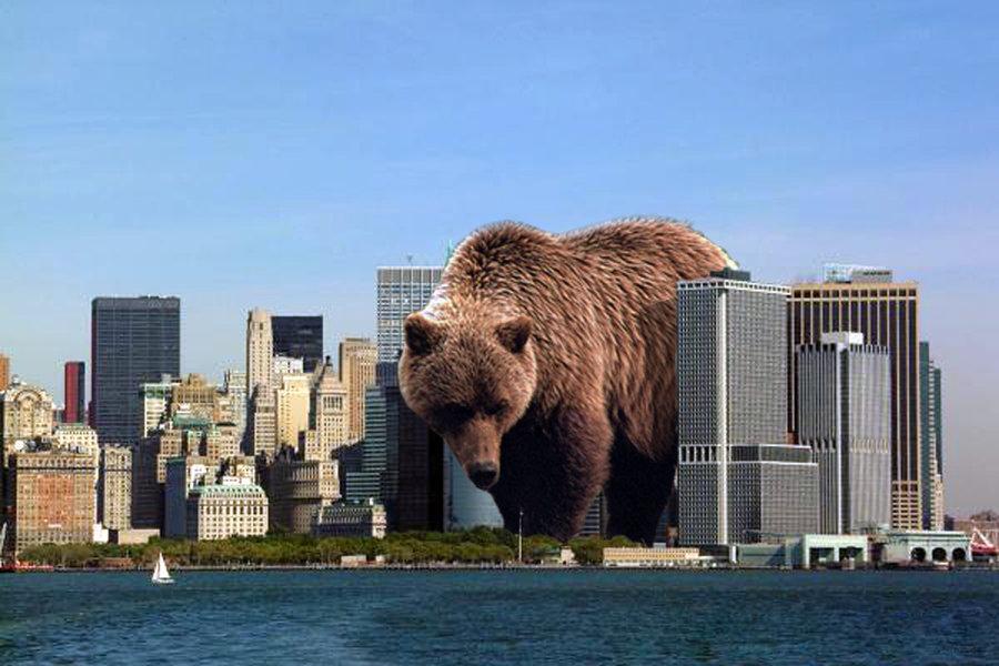 giant_bear