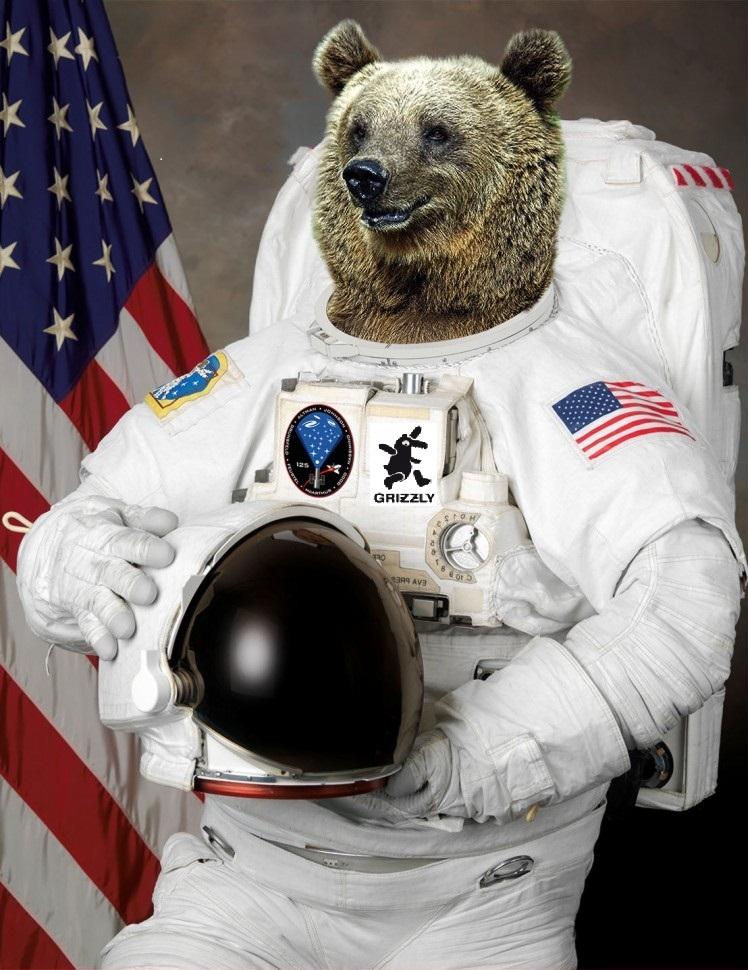 Bears-in-Space--112207