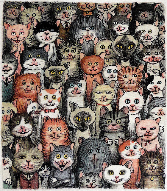 matticchio gatti