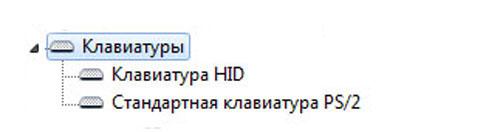 отображение в Диспетчере устройств Windows