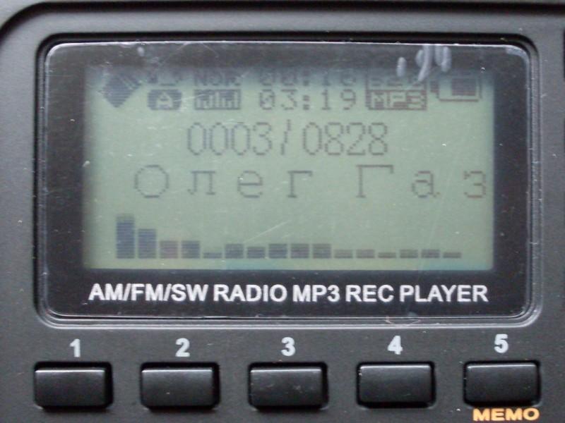 Дисплей во время воспроизведения MP3