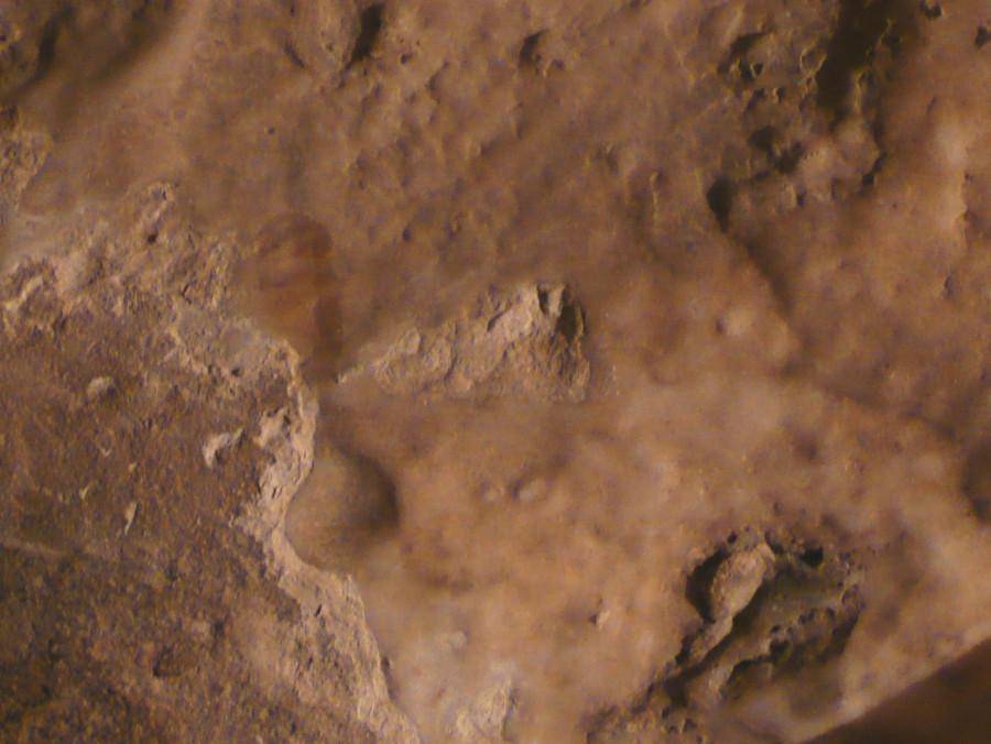 P1120964salz