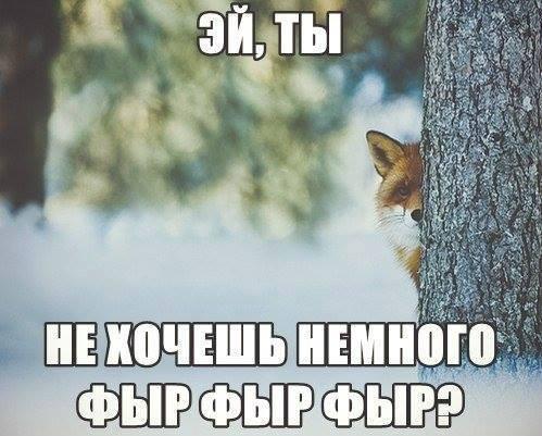 12148_621315131256002_631488505_n