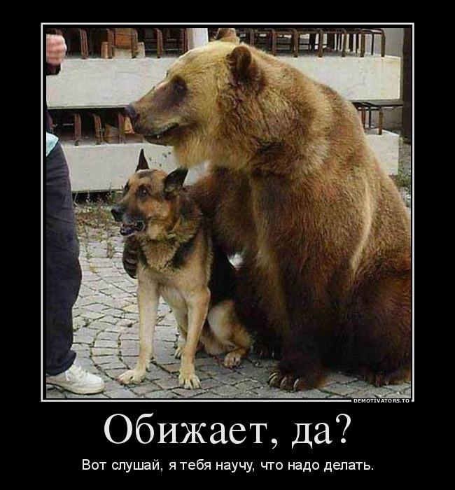 http://ic.pics.livejournal.com/grossfater_m/920926/477370/477370_original.jpg