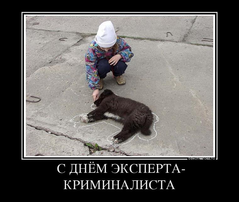 169841_-s-dnyom-eksperta-kriminalista_demotivators_to