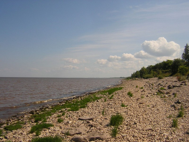 Берег озера Ильмень из Вики.