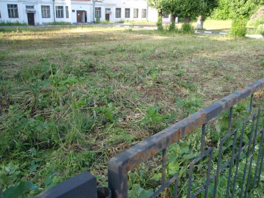 Подстриженный газон 3у