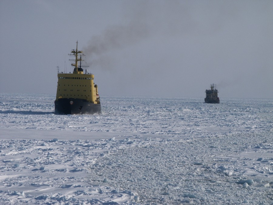Primorye, ice trails 704