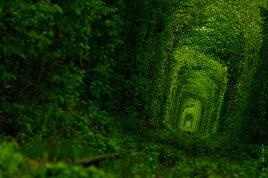 Клевань. Тунель кохання