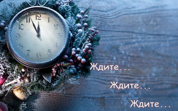 новый год  17
