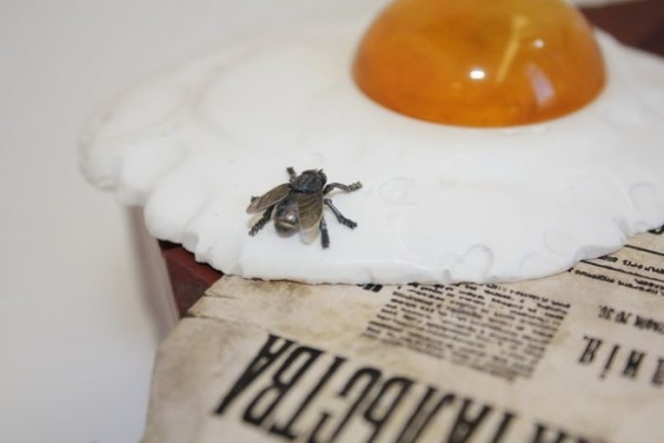 пролетарский завтрак муха