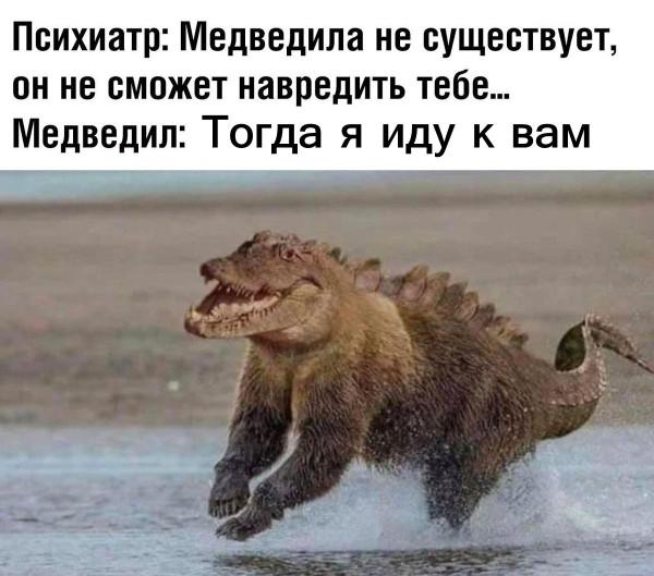 медведил 3