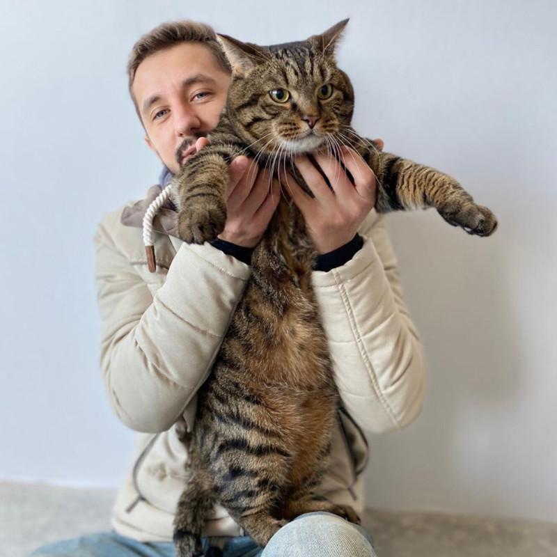 кот и Аэрофлот