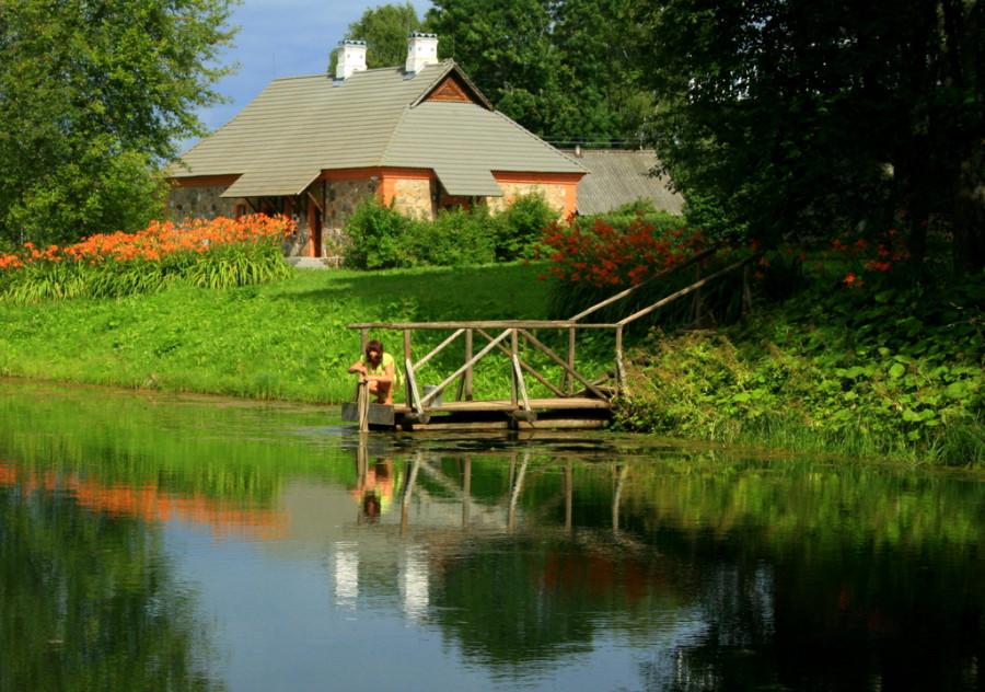 Петровское, пруд