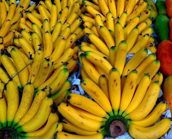Белоруссия бананы
