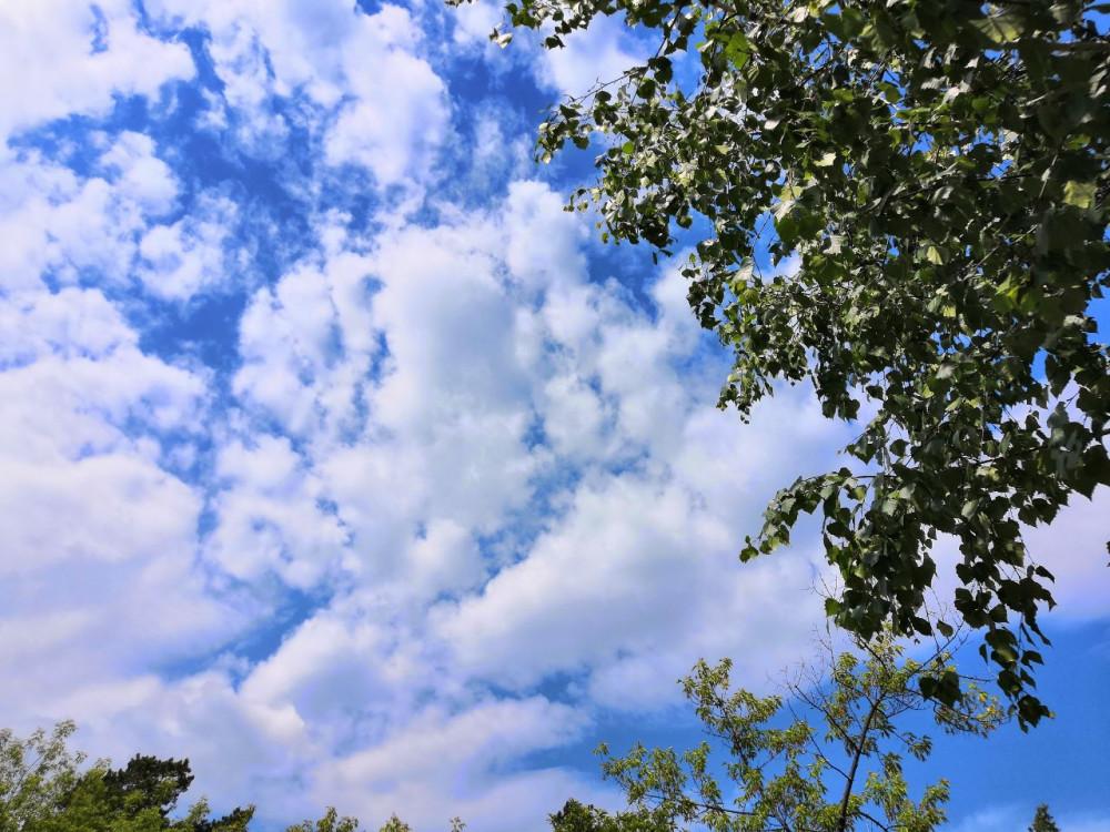 погода стояла прекрасная )))небо архангельского