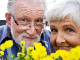 План мероприятий по проведению Международного дня пожилых людей в 2012 году