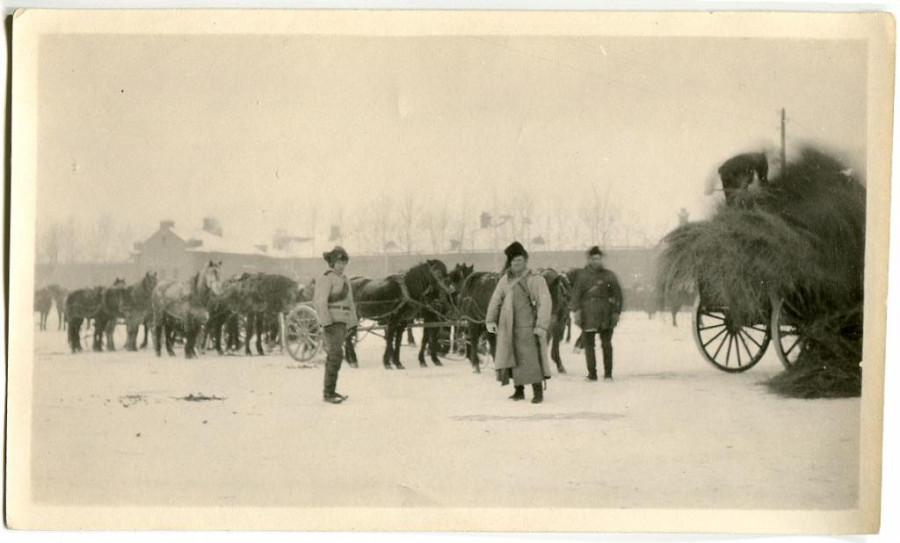 Уссурийские казаки на фуражировке Период, гражданской, войны