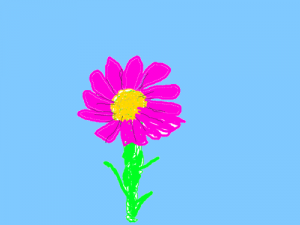 purple flower, blue sky (pinta) 500 x 300