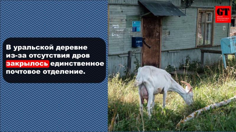 "Фото телеграмм-канал ""Гуренко тут"". ПОДПИШИСЬ!!!"