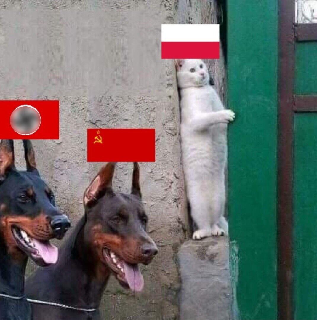 """Фотка из """"вконтакта"""""""